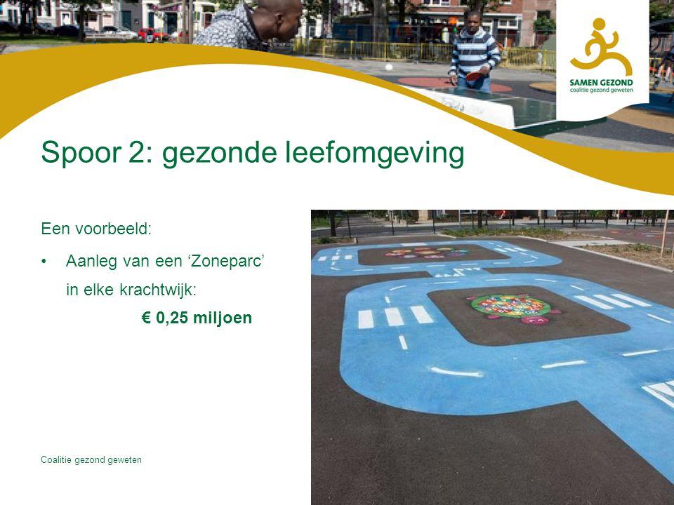 Coalitie gezond geweten Spoor 2: gezonde leefomgeving Een voorbeeld: Aanleg van een 'Zoneparc' in elke krachtwijk: € 0,25 miljoen