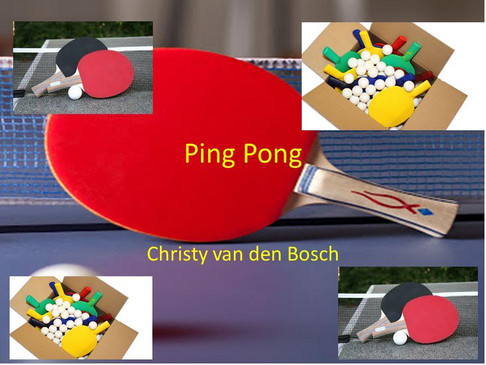 Ping Pong Christy van den Bosch