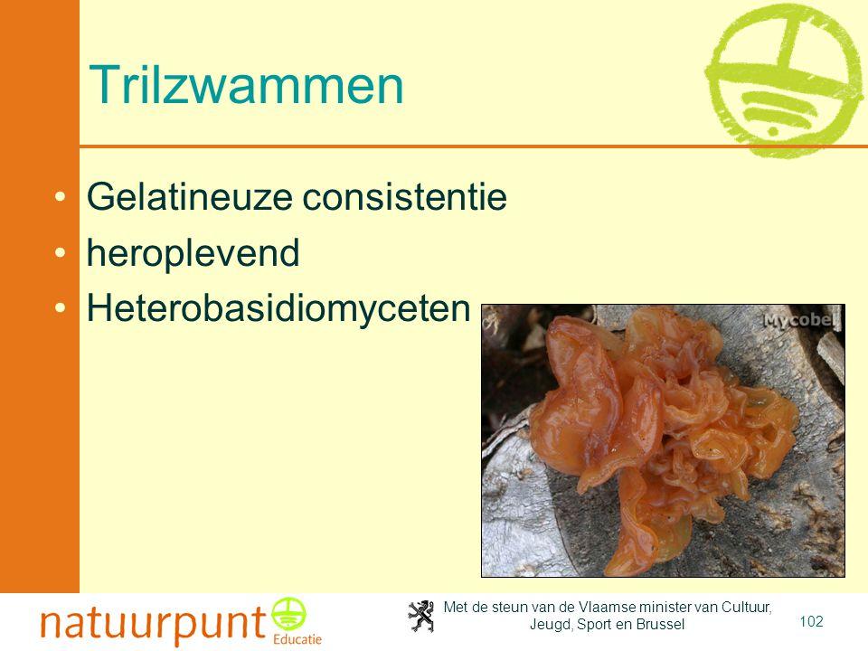 Met de steun van de Vlaamse minister van Cultuur, Jeugd, Sport en Brussel 102 Trilzwammen Gelatineuze consistentie heroplevend Heterobasidiomyceten