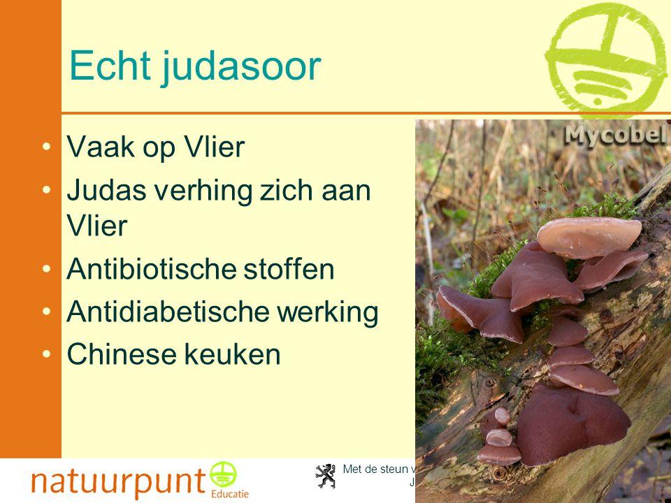 Met de steun van de Vlaamse minister van Cultuur, Jeugd, Sport en Brussel 103 Echt judasoor Vaak op Vlier Judas verhing zich aan Vlier Antibiotische stoffen Antidiabetische werking Chinese keuken