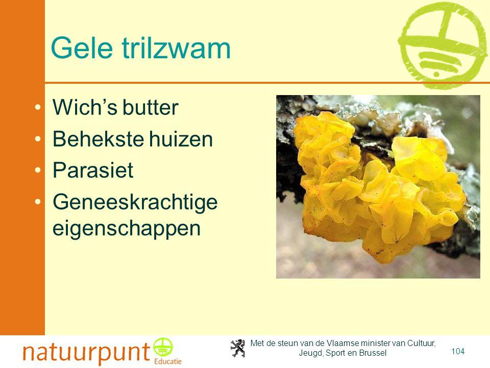 Met de steun van de Vlaamse minister van Cultuur, Jeugd, Sport en Brussel 104 Gele trilzwam Wich's butter Behekste huizen Parasiet Geneeskrachtige eigenschappen