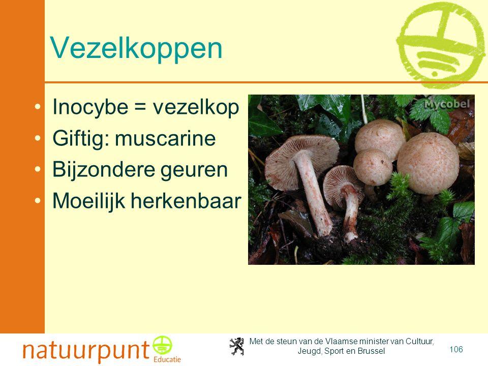 Met de steun van de Vlaamse minister van Cultuur, Jeugd, Sport en Brussel 106 Vezelkoppen Inocybe = vezelkop Giftig: muscarine Bijzondere geuren Moeilijk herkenbaar