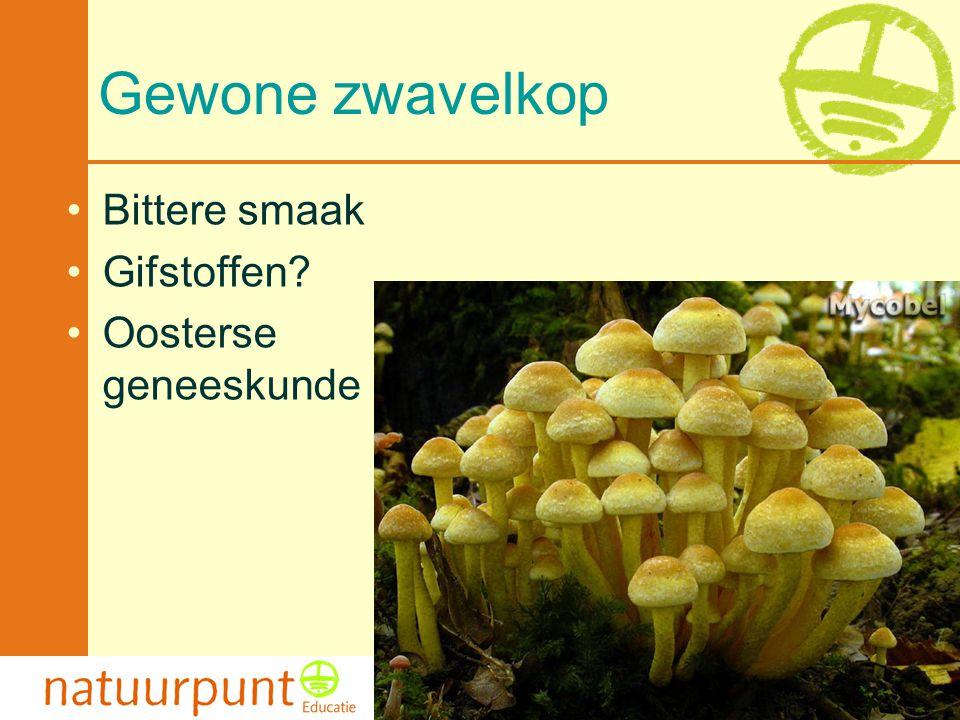 Met de steun van de Vlaamse minister van Cultuur, Jeugd, Sport en Brussel 108 Gewone zwavelkop Bittere smaak Gifstoffen.