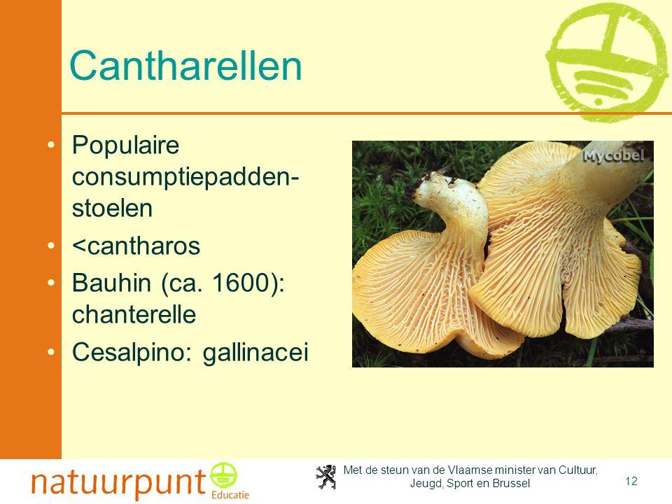 Met de steun van de Vlaamse minister van Cultuur, Jeugd, Sport en Brussel 12 Cantharellen Populaire consumptiepadden- stoelen <cantharos Bauhin (ca. 1