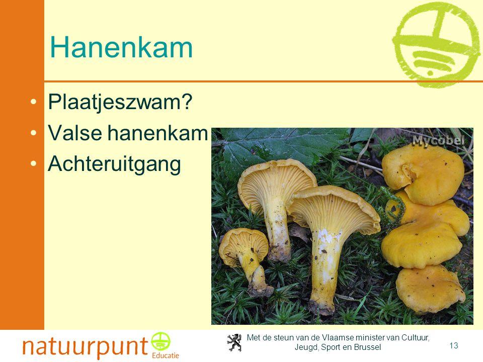 Met de steun van de Vlaamse minister van Cultuur, Jeugd, Sport en Brussel 13 Hanenkam Plaatjeszwam? Valse hanenkam Achteruitgang