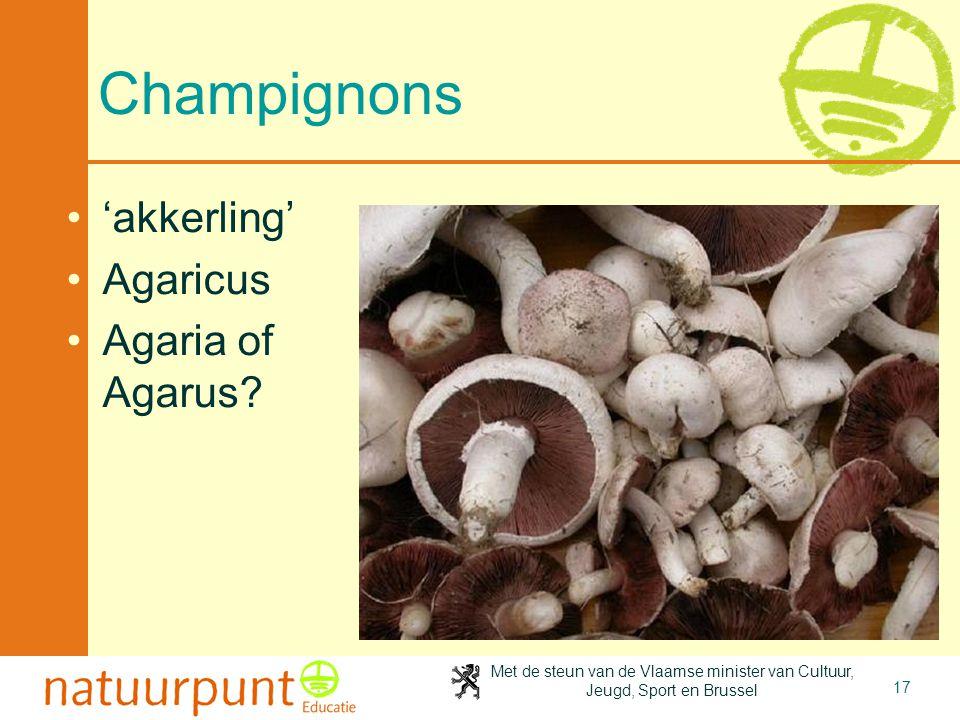Met de steun van de Vlaamse minister van Cultuur, Jeugd, Sport en Brussel 17 Champignons 'akkerling' Agaricus Agaria of Agarus?