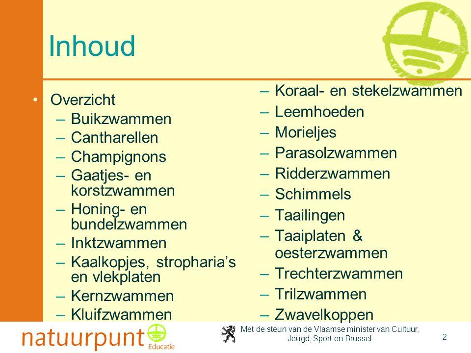 Met de steun van de Vlaamse minister van Cultuur, Jeugd, Sport en Brussel 2 Inhoud Overzicht –Buikzwammen –Cantharellen –Champignons –Gaatjes- en korstzwammen –Honing- en bundelzwammen –Inktzwammen –Kaalkopjes, stropharia's en vlekplaten –Kernzwammen –Kluifzwammen –Koraal- en stekelzwammen –Leemhoeden –Morieljes –Parasolzwammen –Ridderzwammen –Schimmels –Taailingen –Taaiplaten & oesterzwammen –Trechterzwammen –Trilzwammen –Zwavelkoppen