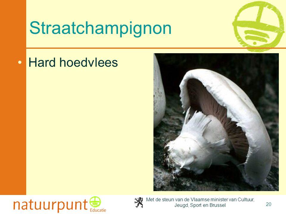 Met de steun van de Vlaamse minister van Cultuur, Jeugd, Sport en Brussel 20 Straatchampignon Hard hoedvlees