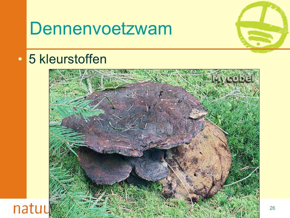 Met de steun van de Vlaamse minister van Cultuur, Jeugd, Sport en Brussel 26 Dennenvoetzwam 5 kleurstoffen