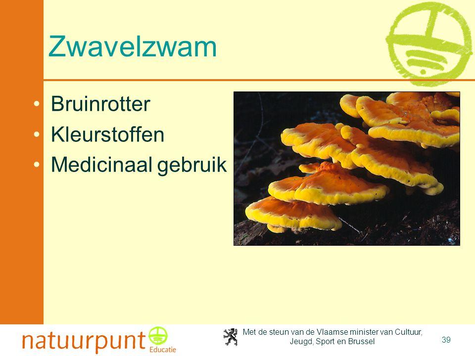 Met de steun van de Vlaamse minister van Cultuur, Jeugd, Sport en Brussel 39 Zwavelzwam Bruinrotter Kleurstoffen Medicinaal gebruik