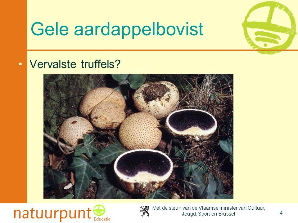 Met de steun van de Vlaamse minister van Cultuur, Jeugd, Sport en Brussel 4 Gele aardappelbovist Vervalste truffels?
