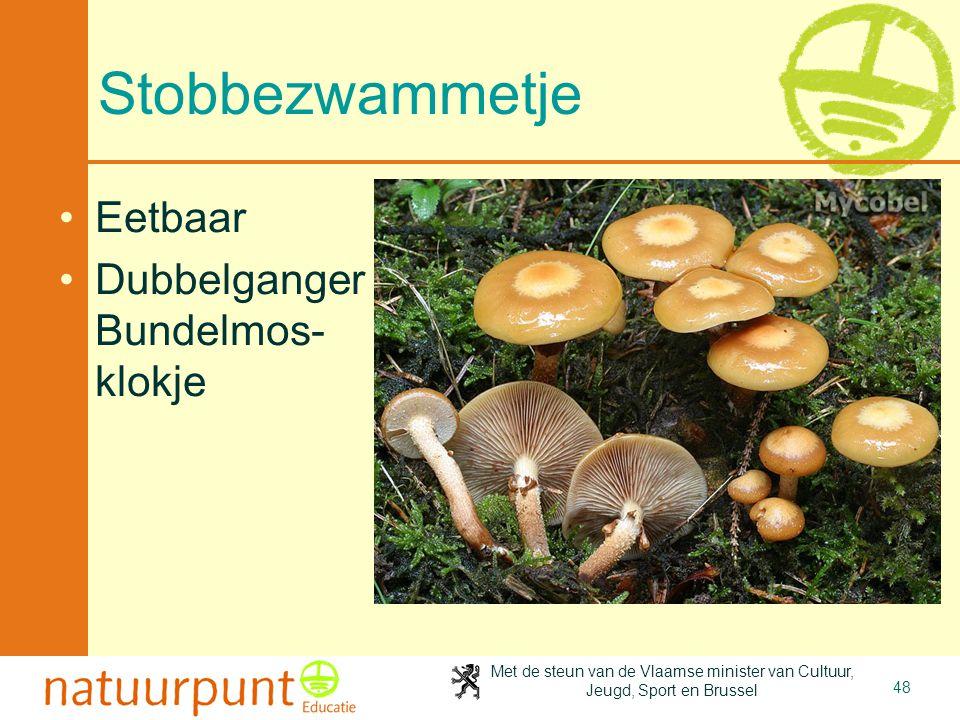 Met de steun van de Vlaamse minister van Cultuur, Jeugd, Sport en Brussel 48 Stobbezwammetje Eetbaar Dubbelganger Bundelmos- klokje
