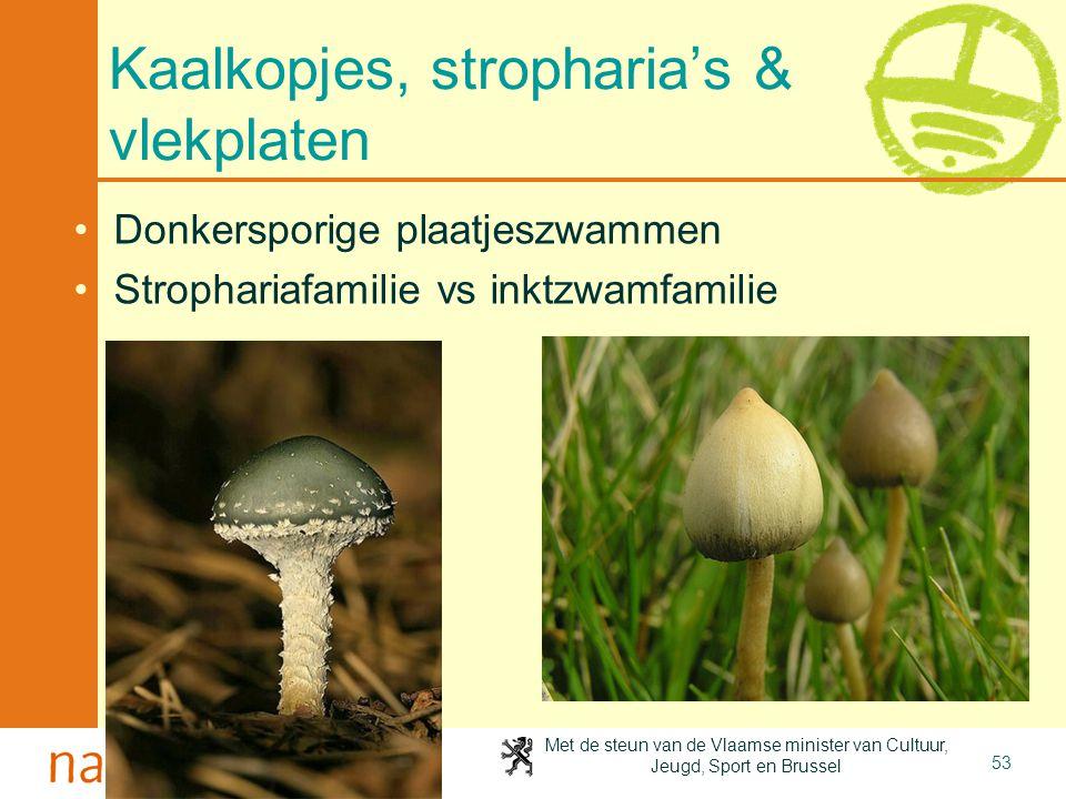 Met de steun van de Vlaamse minister van Cultuur, Jeugd, Sport en Brussel 53 Kaalkopjes, stropharia's & vlekplaten Donkersporige plaatjeszwammen Strophariafamilie vs inktzwamfamilie