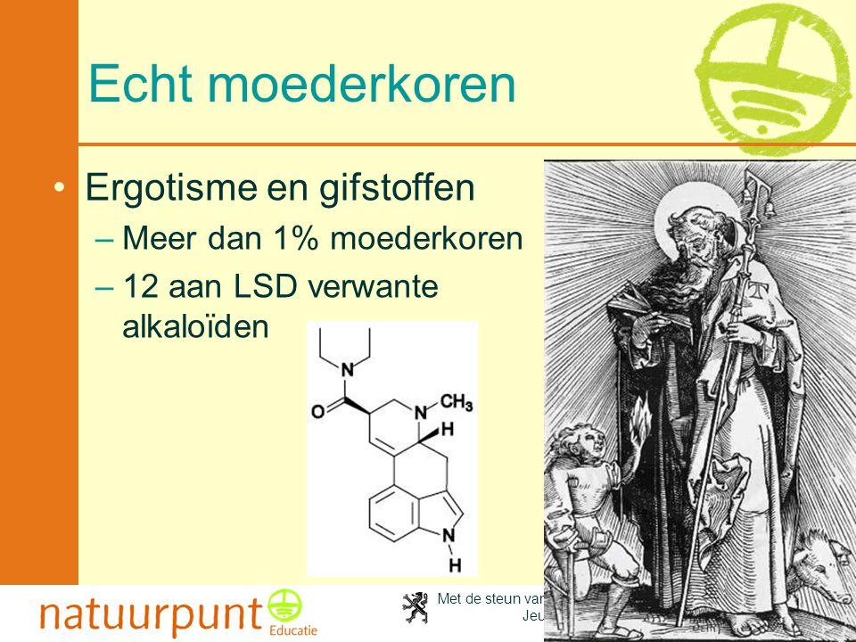 Met de steun van de Vlaamse minister van Cultuur, Jeugd, Sport en Brussel 64 Echt moederkoren Ergotisme en gifstoffen –Meer dan 1% moederkoren –12 aan LSD verwante alkaloïden