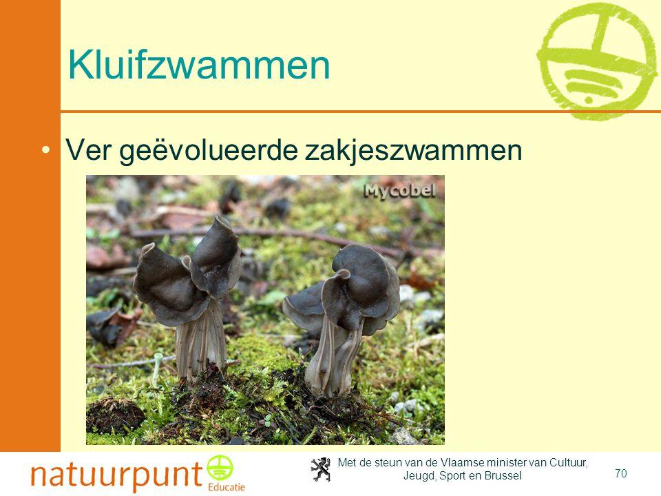 Met de steun van de Vlaamse minister van Cultuur, Jeugd, Sport en Brussel 70 Kluifzwammen Ver geëvolueerde zakjeszwammen
