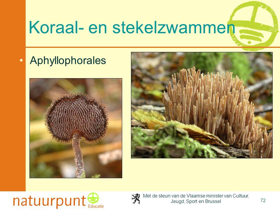 Met de steun van de Vlaamse minister van Cultuur, Jeugd, Sport en Brussel 72 Koraal- en stekelzwammen Aphyllophorales