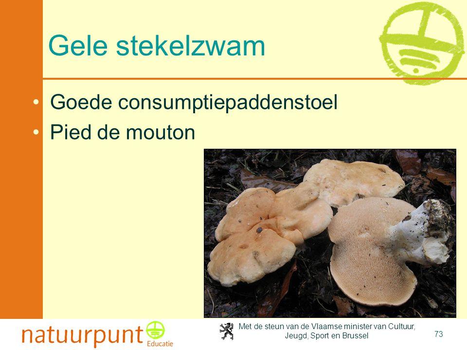 Met de steun van de Vlaamse minister van Cultuur, Jeugd, Sport en Brussel 73 Gele stekelzwam Goede consumptiepaddenstoel Pied de mouton