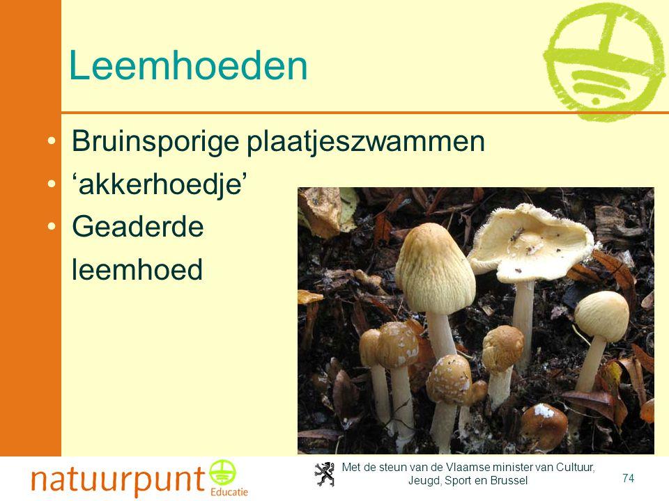 Met de steun van de Vlaamse minister van Cultuur, Jeugd, Sport en Brussel 74 Leemhoeden Bruinsporige plaatjeszwammen 'akkerhoedje' Geaderde leemhoed