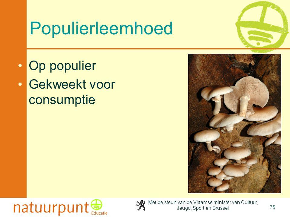 Met de steun van de Vlaamse minister van Cultuur, Jeugd, Sport en Brussel 75 Populierleemhoed Op populier Gekweekt voor consumptie