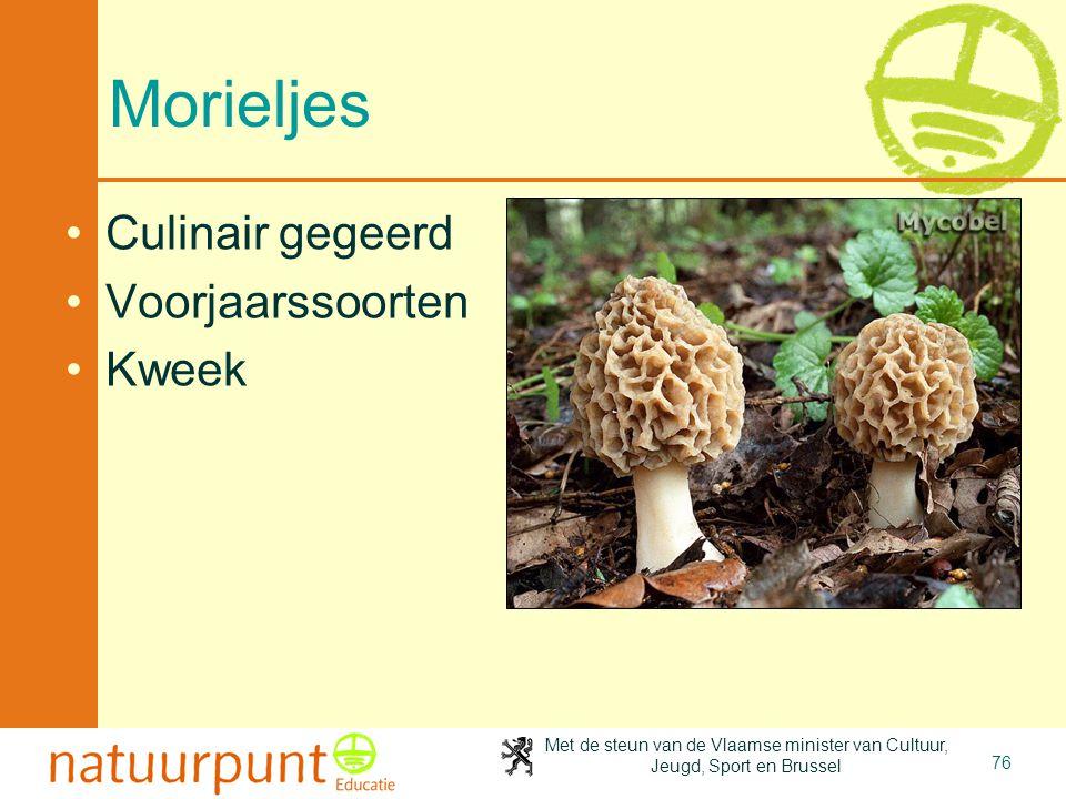 Met de steun van de Vlaamse minister van Cultuur, Jeugd, Sport en Brussel 76 Morieljes Culinair gegeerd Voorjaarssoorten Kweek