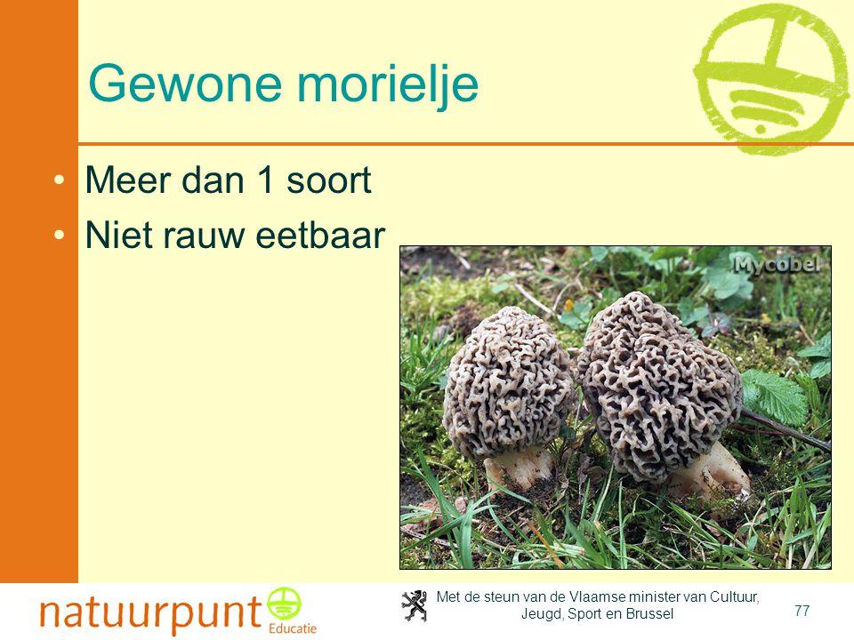 Met de steun van de Vlaamse minister van Cultuur, Jeugd, Sport en Brussel 77 Gewone morielje Meer dan 1 soort Niet rauw eetbaar