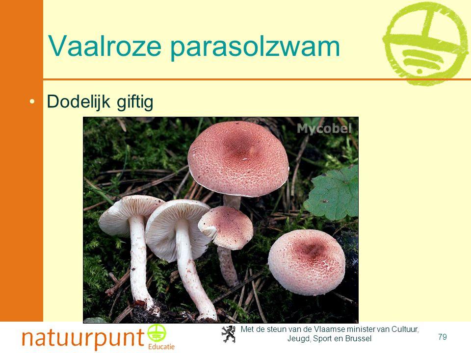 Met de steun van de Vlaamse minister van Cultuur, Jeugd, Sport en Brussel 79 Vaalroze parasolzwam Dodelijk giftig