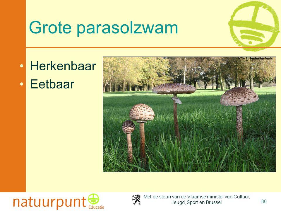 Met de steun van de Vlaamse minister van Cultuur, Jeugd, Sport en Brussel 80 Grote parasolzwam Herkenbaar Eetbaar