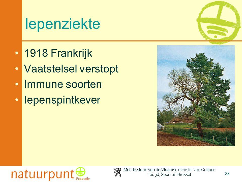 Met de steun van de Vlaamse minister van Cultuur, Jeugd, Sport en Brussel 88 Iepenziekte 1918 Frankrijk Vaatstelsel verstopt Immune soorten Iepenspintkever