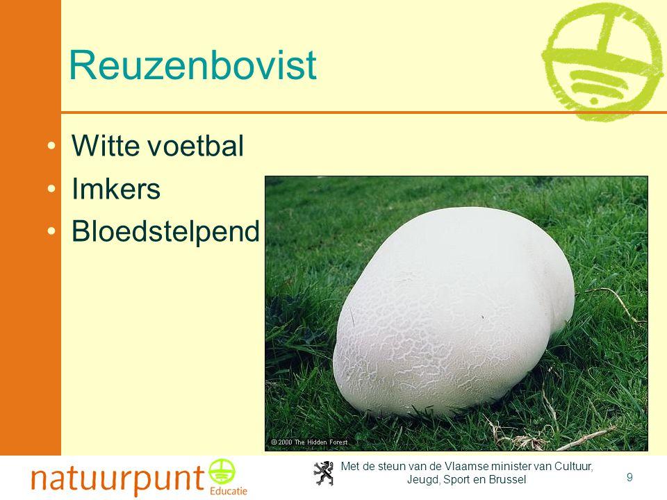 Met de steun van de Vlaamse minister van Cultuur, Jeugd, Sport en Brussel 9 Reuzenbovist Witte voetbal Imkers Bloedstelpend