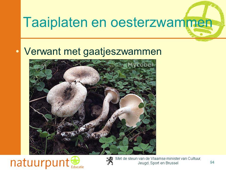 Met de steun van de Vlaamse minister van Cultuur, Jeugd, Sport en Brussel 94 Taaiplaten en oesterzwammen Verwant met gaatjeszwammen