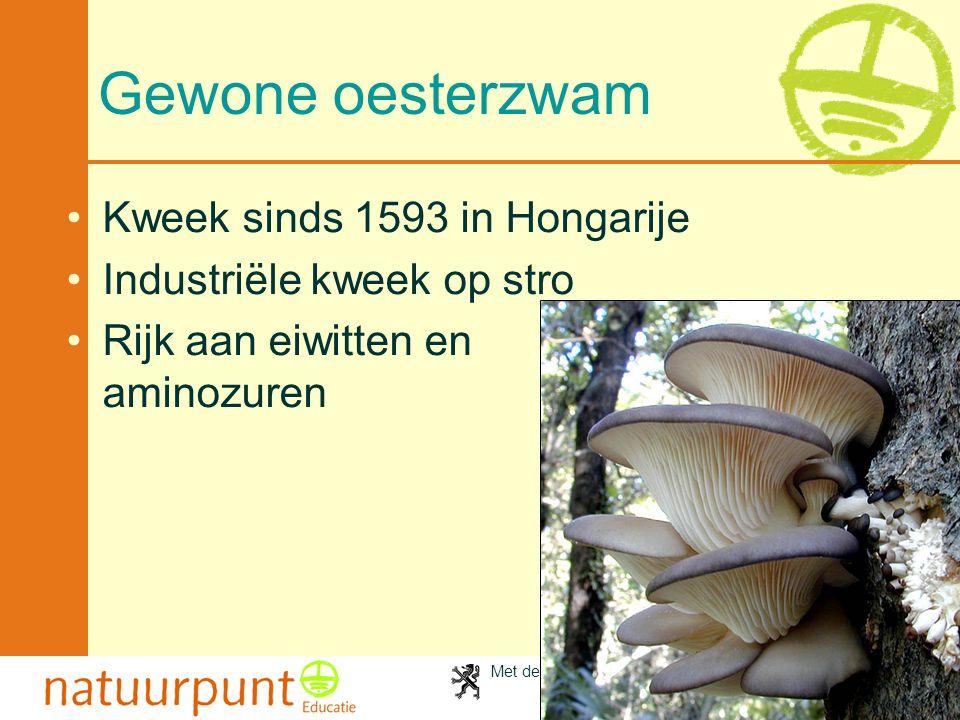 Met de steun van de Vlaamse minister van Cultuur, Jeugd, Sport en Brussel 96 Gewone oesterzwam Kweek sinds 1593 in Hongarije Industriële kweek op stro Rijk aan eiwitten en aminozuren