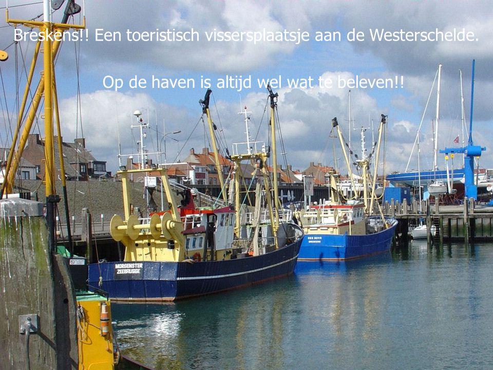 Breskens!.Een toeristisch vissersplaatsje aan de Westerschelde.