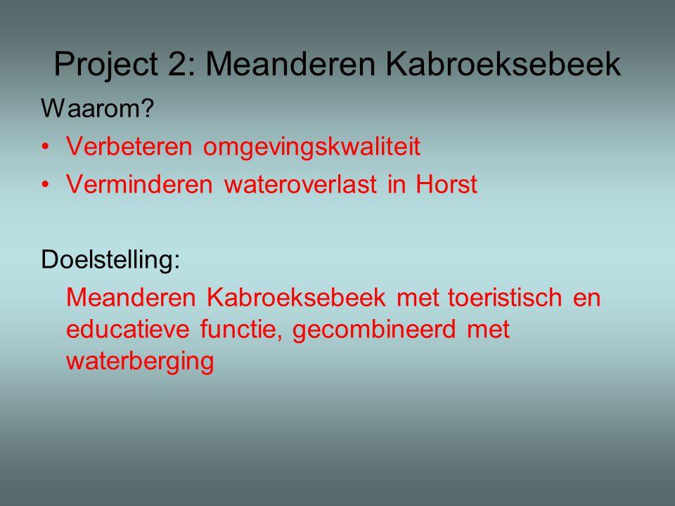 Project 2: Meanderen Kabroeksebeek Waarom.