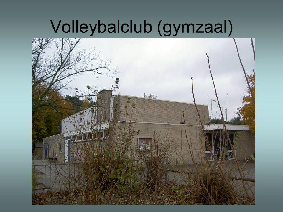 Volleybalclub (gymzaal)