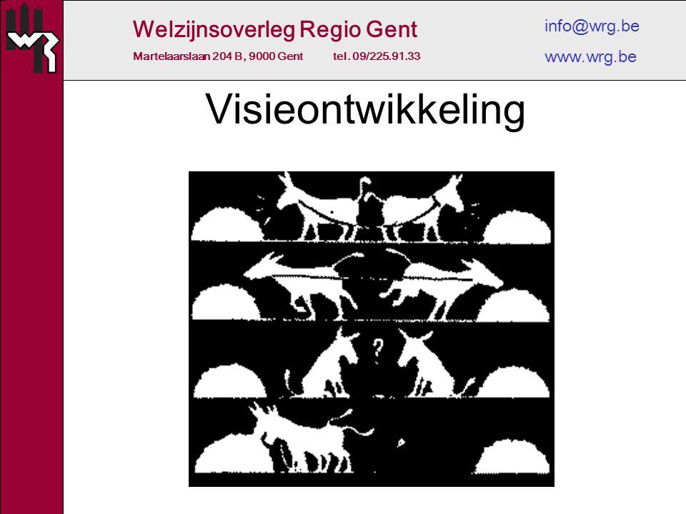 Welzijnsoverleg Regio Gent Martelaarslaan 204 B, 9000 Gent tel. 09/225.91.33 info@wrg.be www.wrg.be Visieontwikkeling