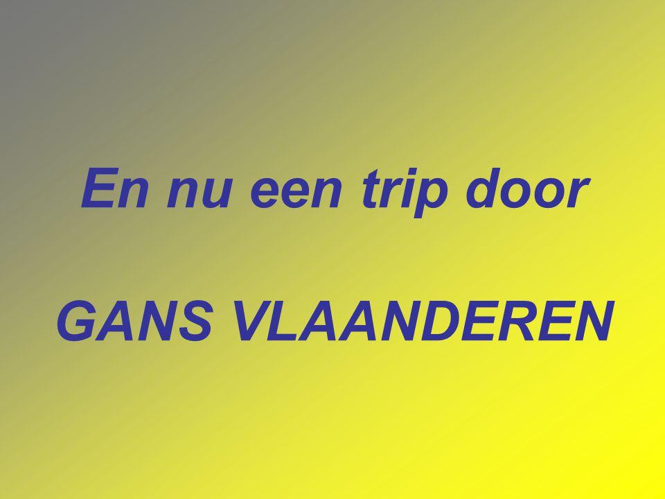 GESCHICHTE Met de Belgische Revolutie van 1830 scheurde België zich af van het huidige Nederland. Na enkele decennia van bewustwording begon de ontwik