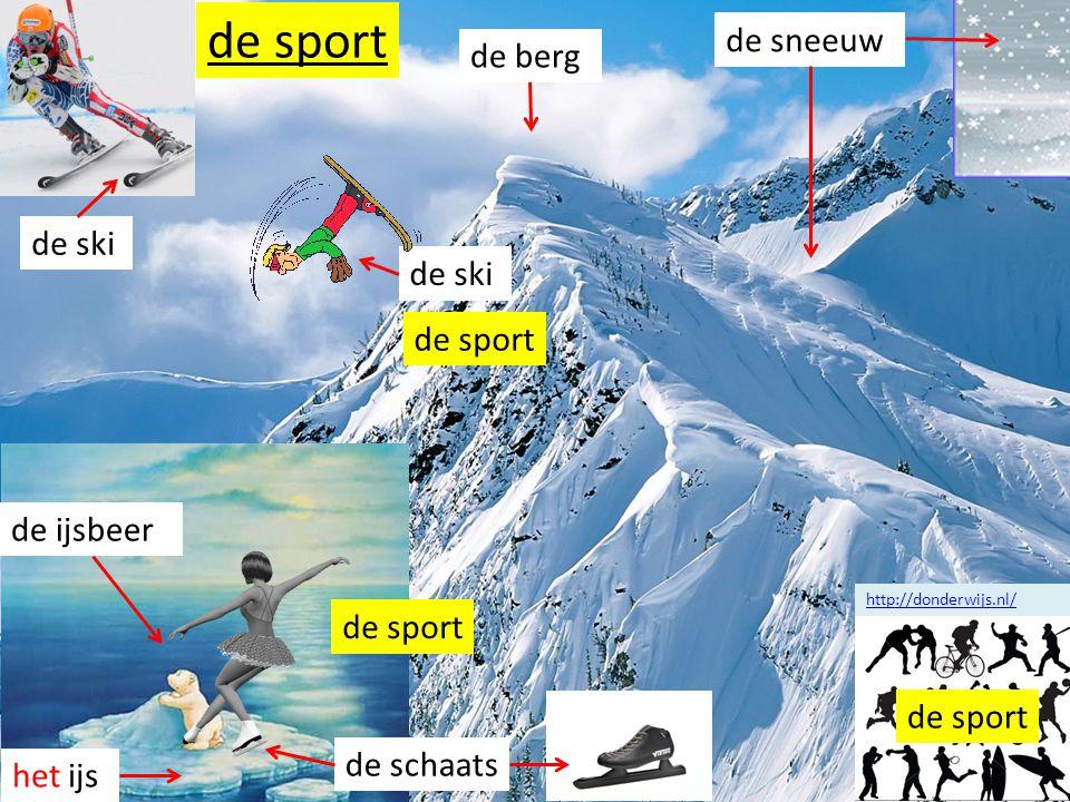 sport sneeuw ijs berg ski schaats de berg de ski de sneeuw het ijs de schaats de ijsbeer de sport http://donderwijs.nl/