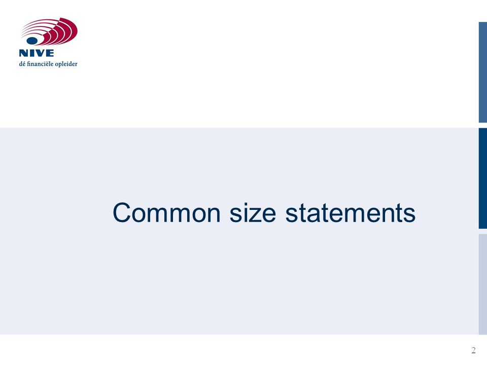 2 Common size statements
