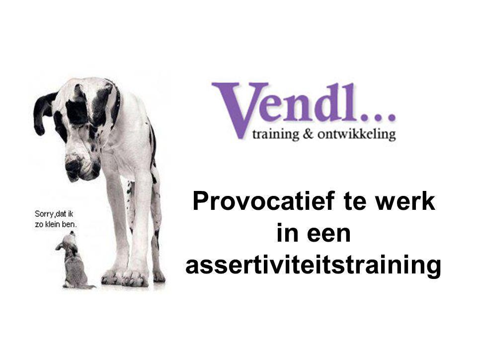 Provocatief te werk in een assertiviteitstraining