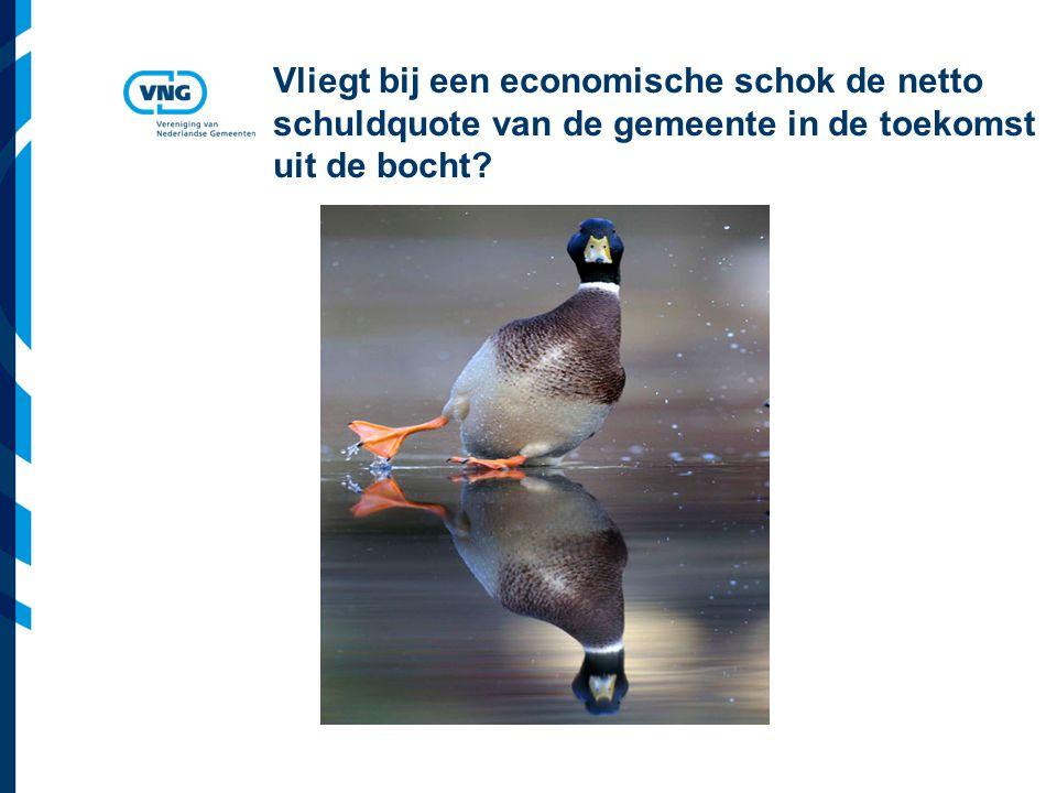 Vereniging van Nederlandse Gemeenten Vliegt bij een economische schok de netto schuldquote van de gemeente in de toekomst uit de bocht