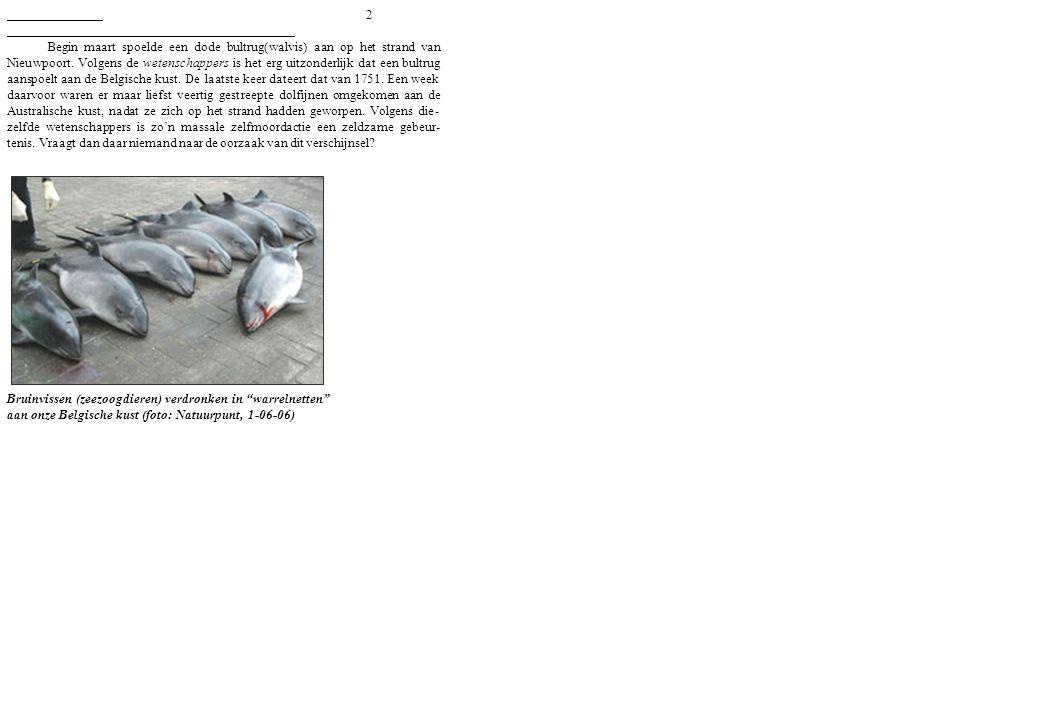 2 Begin maart spoelde een dode bultrug(walvis) aan op het strand van Nieuwpoort. Volgens de wetenschappers is het erg uitzonderlijk dat een bultrug aa