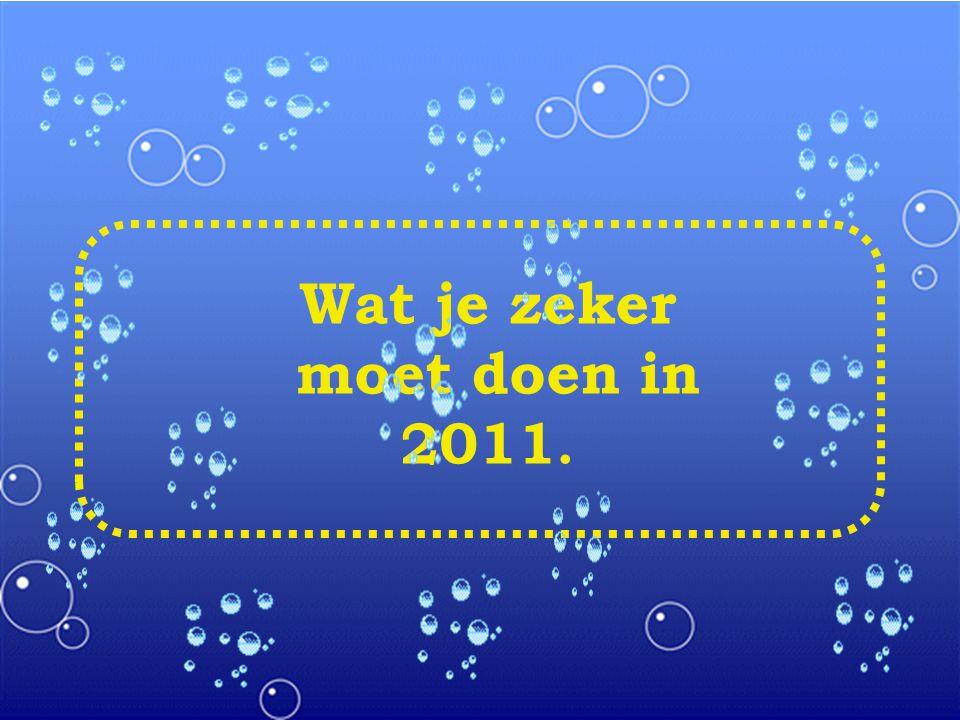 Wat je zeker moet doen in 2011.