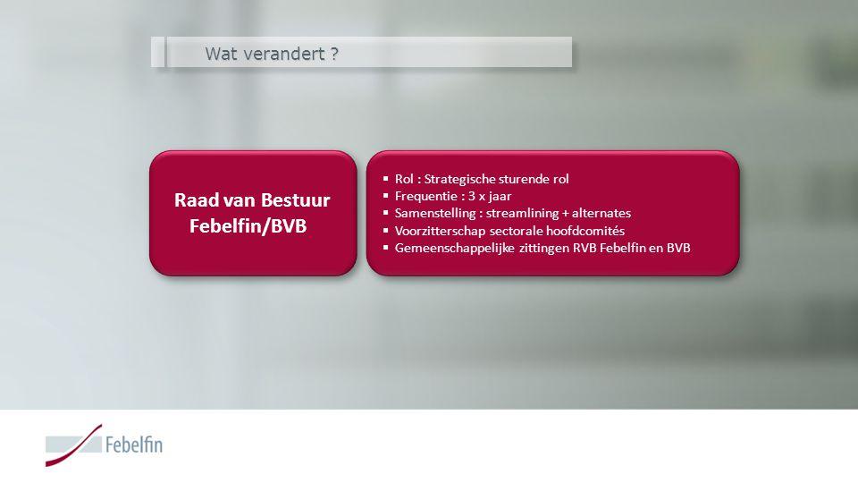 Wat verandert ? Raad van Bestuur Febelfin/BVB Raad van Bestuur Febelfin/BVB  Rol : Strategische sturende rol  Frequentie : 3 x jaar  Samenstelling
