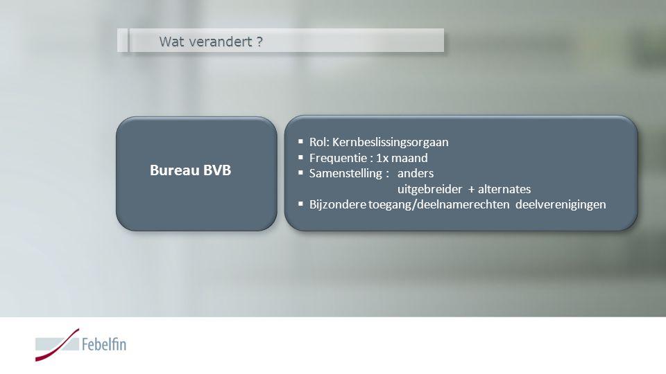 Wat verandert ? Bureau BVB Bureau BVB  Rol: Kernbeslissingsorgaan  Frequentie : 1x maand  Samenstelling : anders uitgebreider + alternates  Bijzon