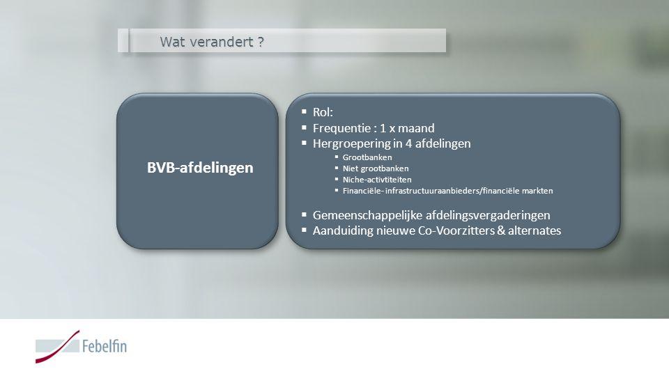Wat verandert ? BVB-afdelingen BVB-afdelingen  Rol:  Frequentie : 1 x maand  Hergroepering in 4 afdelingen  Grootbanken  Niet grootbanken  Niche