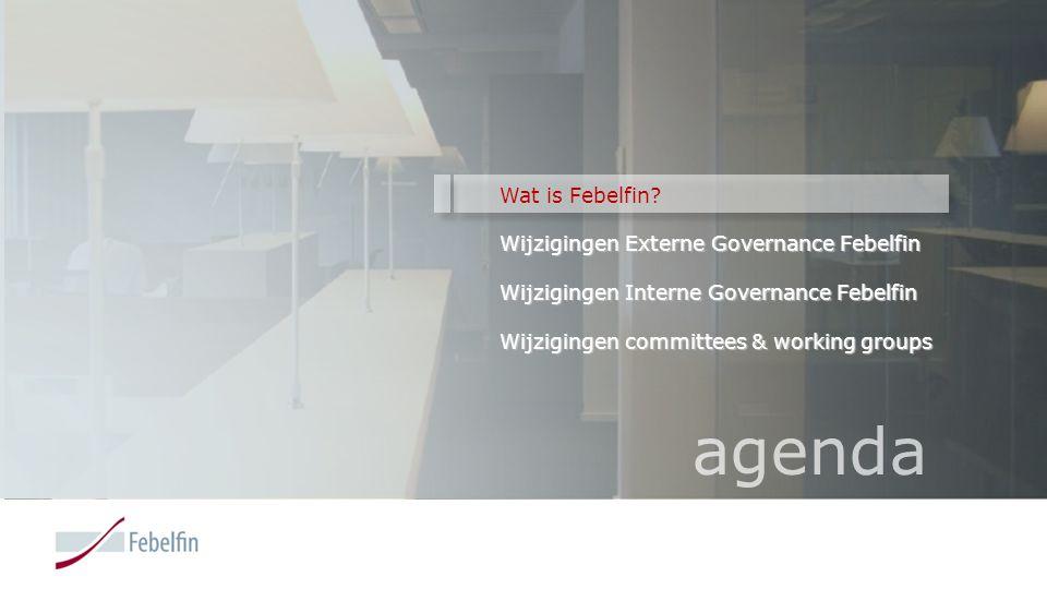 Wat is Febelfin? Febelfin vertegenwoordigt 235 financiële instellingen in België