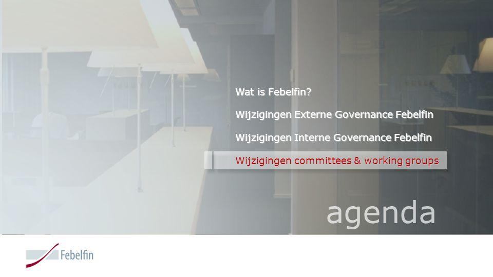 Wat is Febelfin? Wijzigingen Externe Governance Febelfin Wijzigingen Interne Governance Febelfin Wijzigingen committees & working groups agenda