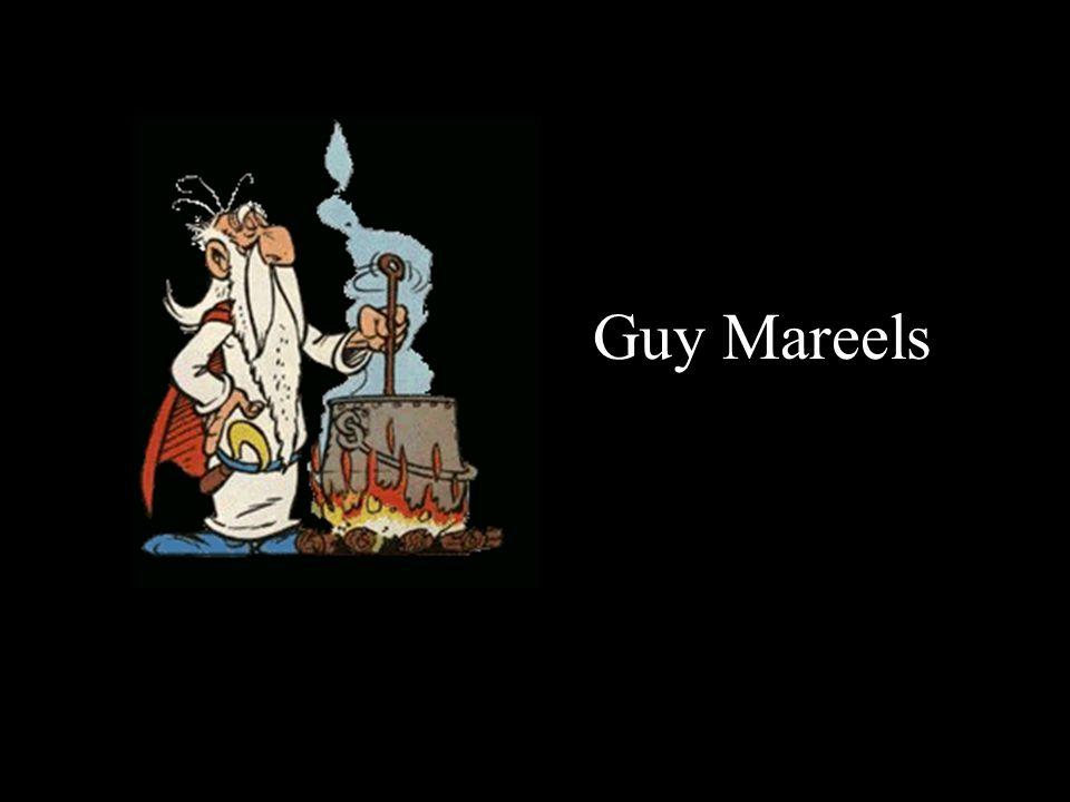 Guy Mareels
