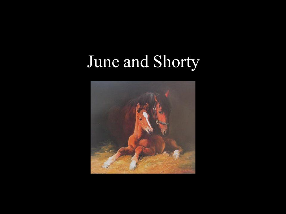 June and Shorty