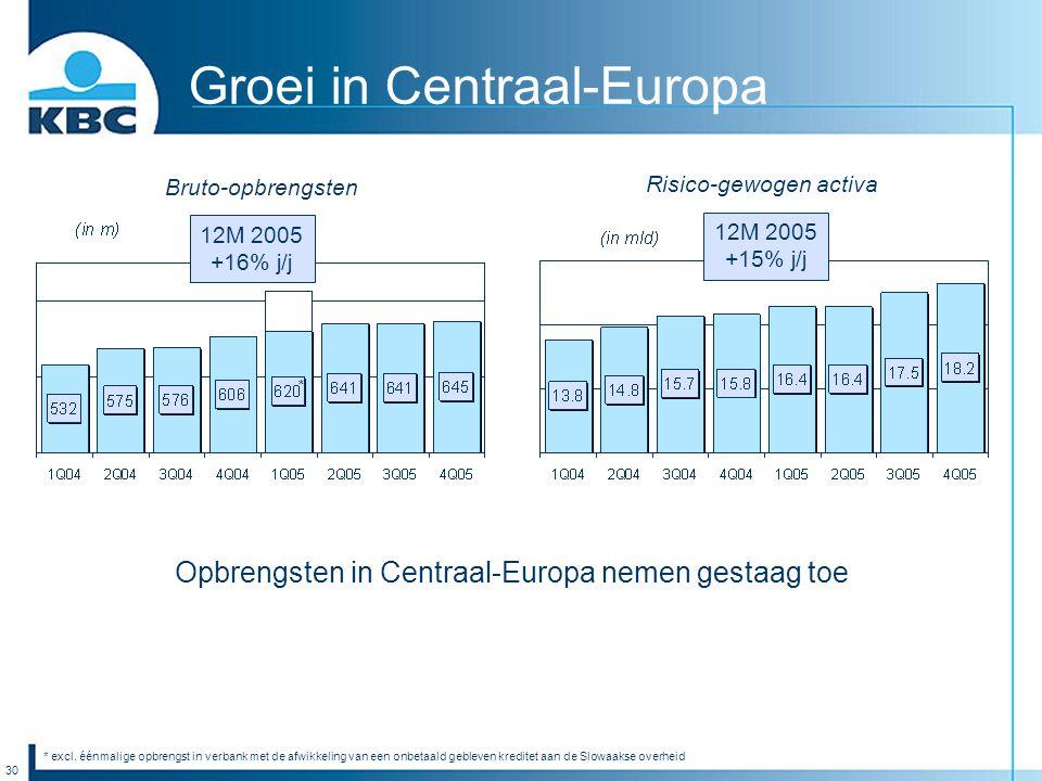 30 Groei in Centraal-Europa Opbrengsten in Centraal-Europa nemen gestaag toe 12M 2005 +16% j/j 12M 2005 +15% j/j Bruto-opbrengsten Risico-gewogen acti